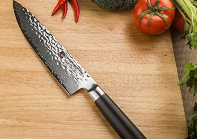 "Allwin Houseware Professional Handmade 8"" Damascus Chefs Knife, 67-layer Damascus Chef Knife with Japanese VG10 Super Steel Core"