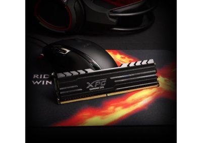 XPG GAMMIX D10 16GB (2 x 8GB) 288-Pin DDR4 3000 CL16 SDRAM Heatsink (PC4 24000) Desktop Memory AX4U300038G16A-DB10
