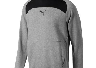 Puma Modern Sports Hoodie Men Sweat Basics